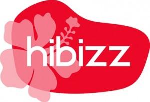 Groenhof_hibizz_v2.2